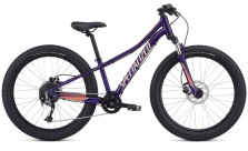 SPECIALIZED RIPROCK COMP 24 GLOSS PLUM2020 ÅRS MODELL